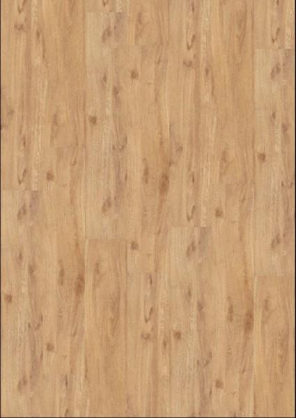 JOKA 230 HDF Designboden | Vinylboden | Klickvinyl 4501B Authentic Oak auf DeinBoden24.de