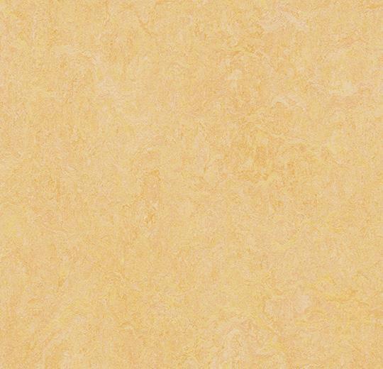 Linoleum Forbo Marmoleum Fresco 2.5mm - 3846 natural corn auf DeinBoden24.de