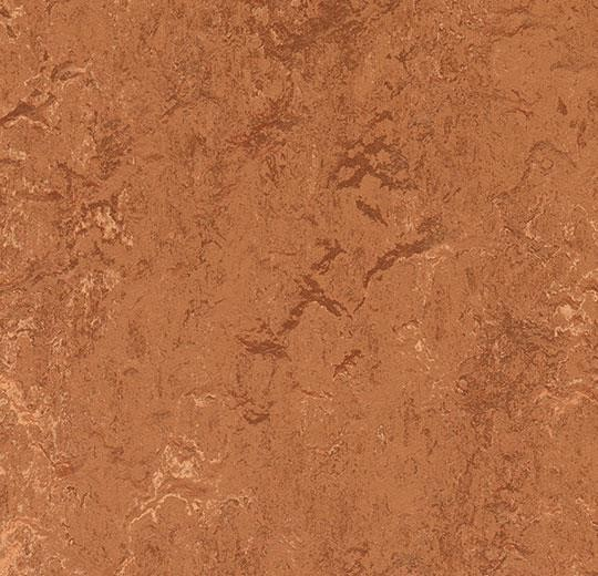 Linoleum Forbo Marmoleum Real 2.5mm - Farbe: 2767 rust auf DeinBoden24.de