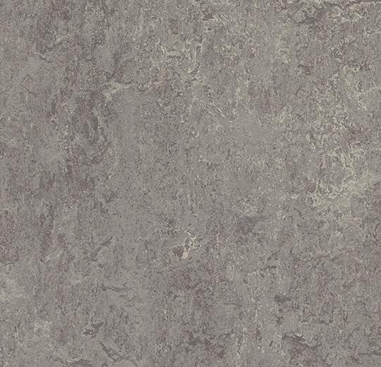 Linoleum Forbo Marmoleum Real 2.5mm - Farbe: 2629 eiger auf DeinBoden24.de