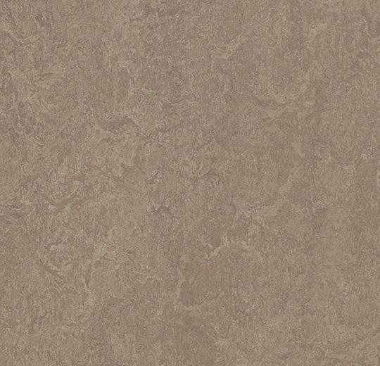 Linoleum Forbo Marmoleum Fresco 2.5mm - 3246 shrike auf DeinBoden24.de