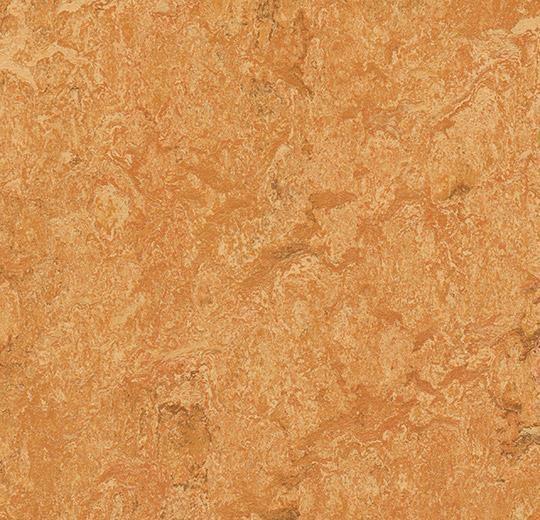 Linoleum Forbo Marmoleum Real 2.5mm - Farbe: 3174 Sahara auf DeinBoden24.de
