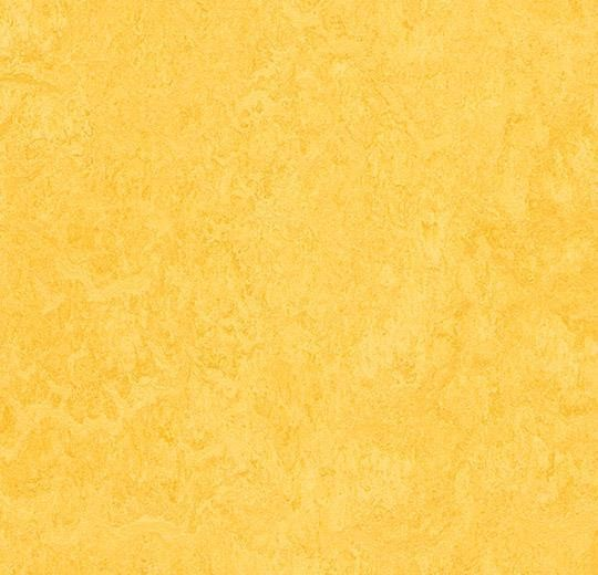 Linoleum Forbo Marmoleum Fresco 2.5mm - 3251 lemon zest auf DeinBoden24.de