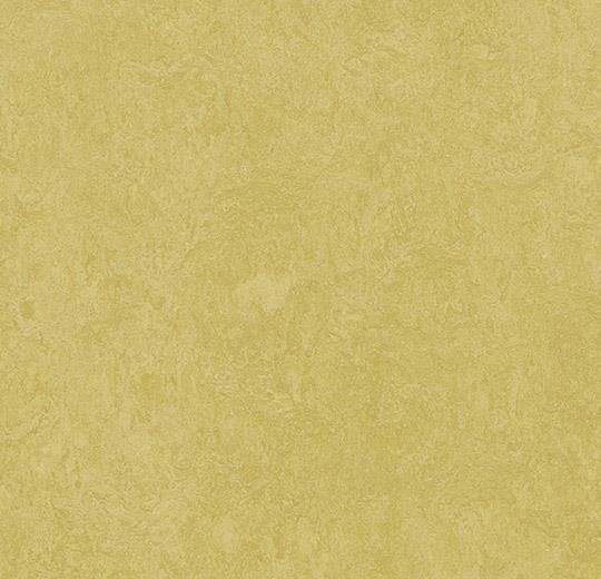 Linoleum Forbo Marmoleum Fresco 2.5mm - 3259 mustard auf DeinBoden24.de