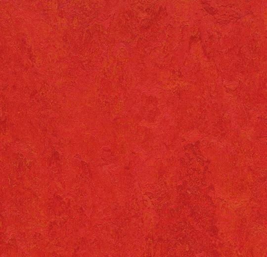 Linoleum Forbo Marmoleum Fresco 2.5mm - 3131 scarlet auf DeinBoden24.de
